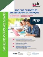 ESA-Brochure-Bachelor-Chargé-de-Clientèles-en-Assurance-et-Banque-3ème-année (1)