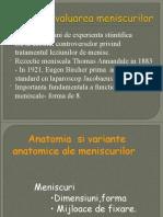 IRM a Meniscurilor