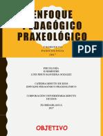 ENFOQUE PRAXEOLÓGICO