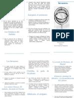 Triptico epistemologia.pdf