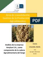 Sorgo2.pdf