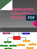 pdf-presentacion-ruta-importadorapptx_compress.pdf