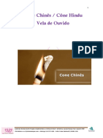 Apostila - Cone Chines.pdf