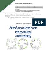 GUÍA-N°11-CIENC-2°-DOC