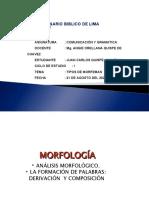 organizacion visual del tipo de morfema