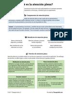 ATENCION PLENA.pdf