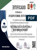 SEGURIDAD SALUD OCUPACIONAL Y MEDIO AMBIENTE.pdf