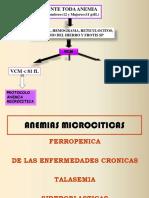 B-ANEMIAS MICROCITICAS 2019 - copia (1).pdf
