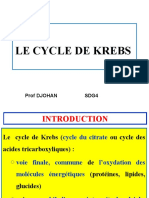LE CYCLE DE KREBS