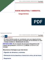 HyST 6 (Carga termica).pdf