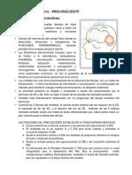 ESFERAS MENTALES.pdf