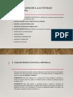 FASES Y ETAPAS DE LA ACTIVIDAD PROBATORIA