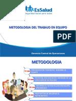 METODOLÓGÍA DE LA ASISTENCIA TECNICA DE GESTION EN LOS SS DE NUTRICION GCOP