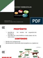 4 Niveles de Organización y Biomoléculas 2020 - 20 (4)