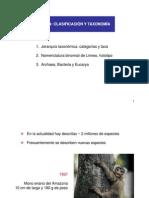 CV 6. Clasificacion y Taxonomia