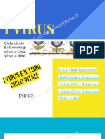 i-virus-ciclo-virale
