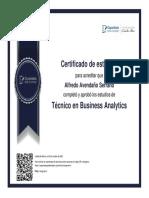 Técnico en Bussines Analytics