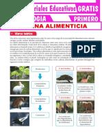 Cadenas-Alimenticias-para-Primero-de-Secundaria.pdf