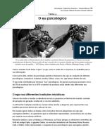 4. O eu psicológico.pdf