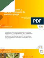 Caracterización y manejo integrado de insectos plaga