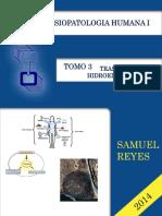 Trastornos Hidroeléctricos - Samuel Reyes.pdf