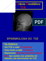 tce-100425124643-phpapp02