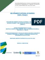 PAF-PMIB-I-016-2020_Cali_Perfil tecnico_20200304 (1).pdf