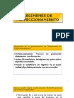 DIP REGIMENES DE PERFECCIOMIENTO.pptx
