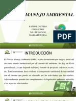 SEMINARIO 8 PLAN DE MANEJO AMBIENTAL