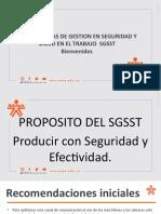 introducción SGSST