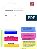 Organizador Visual Teorias de Socializacion