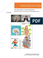 TALLER lorena GENERALIDADES RIESGO PISOCOSOCIAL.pdf