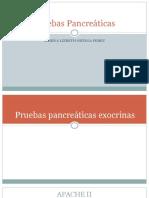 Pruevas de funcion pancreatica
