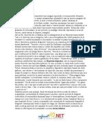www.referatex.ro-Poema chiuvetei-de Mircea Cartarescu