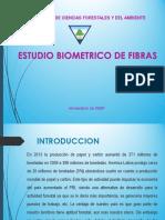 Semana 4. Estudio biométrico de fibras Parte 1