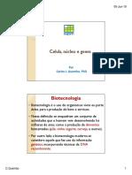 Extraccao do DNA bases fundamentais.pdf