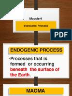 Module 4 Endogenic Processes.pdf