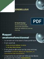 9- LE SYNDROME cerebelleux