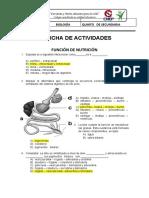 S21 -FICHA DE ACTIVIDADES  55TO SEC (2)