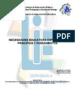necesidades_educativas_principios_fundamentos________________