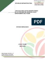 ESTUDIO_HIDROL+ôGICO_PLACA_HUELLAS