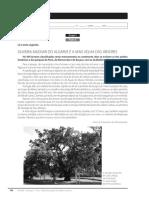 Ficha formativa 7