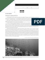 Ficha Formativa 8