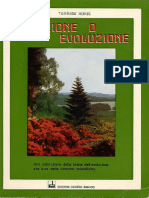 Creazione o Evoluzione