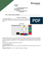 Taller integrado fase 2
