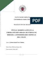 CHRISTIAN DANIEL TORO CHILUISA.pdf