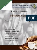 Sistema productivo de cafe y cacao