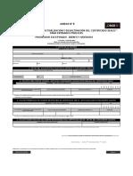 Directiva 011-2017_Anexo 5