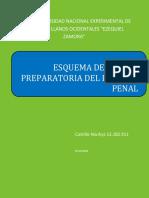 ESQUEMA DE LA FASE PREPARATORIA DEL PROCESO PENAL