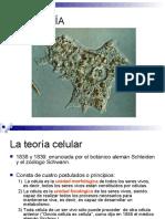 citologia-1202846727254419-2.pdf